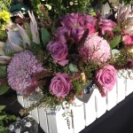 King Proteas, Chrysanthemum's (Giant), Roses, Fynbox in a Picket Box