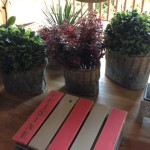 Wooden Place Mats - Pot Holders