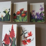 Coralfig - Greeting Cards