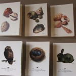 Coralfig - Shells Nest Rabbit and Owl Greeting Cards