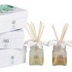DELUXE reed diffuser perfume 100ml - 10 reeds and lily ceramic shoulder in a gift set